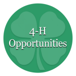 4-H Opportunities