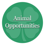 Animal Opportunities