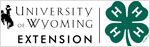 UW Extension and 4-H Black Logo