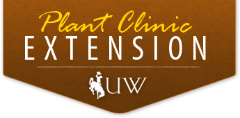 Plant Clinic - University of Wyoming Extension