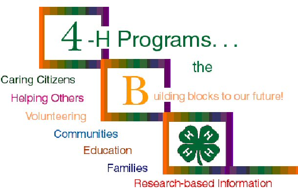 4-H Programs, the building blocks to our future!