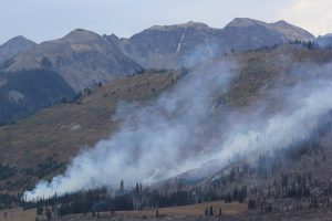 2016 NW Wyoming wildfire